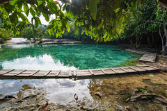 Emerald pool at Krabi Thailand Royalty Free Stock Images