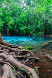 Emerald Pool at Krabi in Thailand. Royalty Free Stock Photography