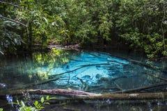 Emerald pool Stock Photography