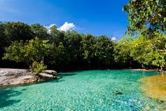 Emerald Pool National Park Krabi images libres de droits