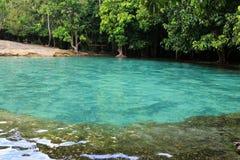 Emerald Pool (Sa Morakot) i Krabi Arkivfoton
