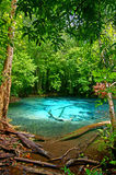 Emerald pool 7. This is spring of Emerald Pool. This hot spring originates from a warm stream in the lowland forest of Khao Nor Juji which is supposedly Thailand stock photo