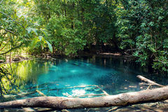 Emerald Pool Royalty Free Stock Images