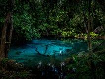 Emerald Pool Thailand è uno stagno verde bluastro che ha riempito di chiara acqua fotografia stock libera da diritti