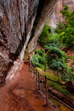 Emerald pool trail Stock Photography