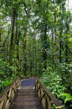 Emerald Pool Trail Photos stock
