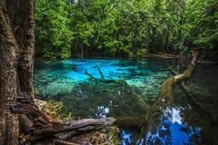 Emerald Pool Royalty Free Stock Photos