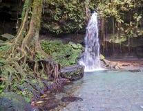 Emerald pool waterfall in Dominica - UNESCO World Heritage Site stock photo