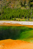 Emerald Pool, Yellowstone Royalty Free Stock Image