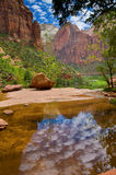 Emerald Pools. Clouds are reflecting in one of the Emerald Pools in Zion National Park, Utah Stock Images