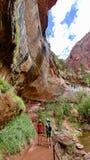 Emerald Pools Trail på Zion National Park royaltyfria foton