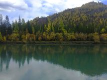 Emerald river. Reflection of autumn forest in the water. Autumn landscape. Chuya river. Altai Mountains royalty free stock photo