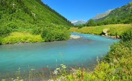 Emerald river Stock Photography