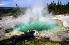 Emerald Springs royalty free stock image