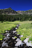 Emerald Stream. In Montana on a beautiful summer's day Stock Photo