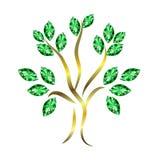 Emerald Tree Royalty Free Stock Photos