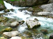 Emerald water. Detail of Arazas river in the Ordesa National Park, Huesca (Spain Stock Photos
