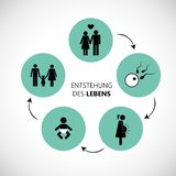 The emergence of human life concept pictogram vector illustration