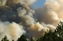 Emergency: smoke in the sky from burning wood Stock Images