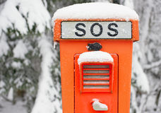 Emergency SOS telephone. Snow covered emergency SOS telephone with wintry background of trees Stock Photo