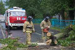 Emergency workers are clearing the streets from the collapsed the old tree after a storm Stock Photos