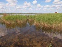 Ķemeri National Park (Latvia) Stock Images