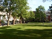 Emerson Hall, двор Гарварда, Гарвардский университет, Кембридж, Массачусетс, США стоковое изображение rf