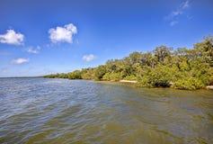 Emerson Point Preserve Coastline arkivbild