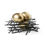 Emerytalny Gniazdowy jajko Zdjęcie Royalty Free