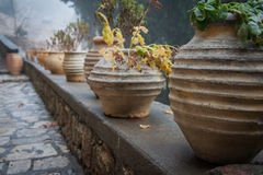 Emialon Lousias klyfta, Peloponnese, Grekland Royaltyfri Foto