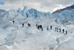 Emigrando en el glaciar de Perito Moreno, la Argentina. Foto de archivo
