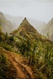 Emigrando la ruta 202 a lo largo de la vegetación de la caña de azúcar que va a través del valle de Xo-Xo a Ribeira grande Santo  fotografía de archivo libre de regalías