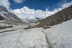 Emigrar el rastro al campo bajo de Annapurna, ABC, Pokhara, Nepal Foto de archivo