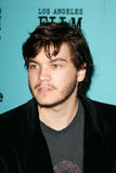 Emile Hirsch Royalty Free Stock Image
