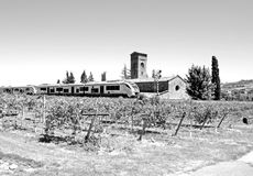 Black and white photography of a train passing by a church between trees and country with kiwi field Stock Photography