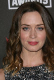 Emily Blunt Royalty Free Stock Photos