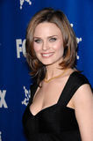 Emily Deschanel Royalty Free Stock Photo