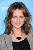 Emily Deschanel Royaltyfri Foto