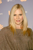 Emily Procter Stock Images