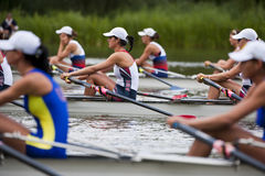 Emily Theys. BOSBAAN, AMSTERDAM - JULY 23: Emily Theys (USA Women's Quadruple Sculls) concentrates before the start of the B-Finals at the Bosbaan rowing course Royalty Free Stock Photography