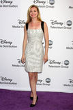 Emily VanCamp arrives at the ABC / Disney International Upfronts Stock Photography