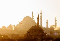 Eminonu, Istanbul/ Turkey - 02 07 2014: Scenic view of Blue MosqueSultanahmet Cami with behind the New MosqueYeni Cami at. Sunset. Bird detail stock image