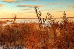 Emiquon Sunset Stock Photography