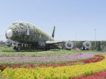 Emirados Airbus 380 no jardim do milagre de Dubai Fotos de Stock Royalty Free