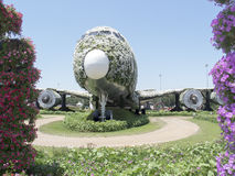 Emirates Airbus 380 at Dubai Miracle Garden stock photo
