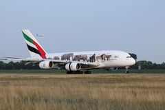 Emirates A380 `United for Wildlife` Livery plane takes off from AMS Airport, Netherlands. Emirates `United for Wildlife` Livery jumbo plane takes off from stock images