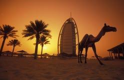 EMIRATI DUBAI DELL'ARABIA fotografia stock