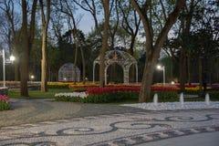 Emirgan公园,伊斯坦布尔,土耳其在晚上 免版税库存照片