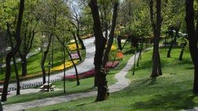 Emirgan Korusu расположенное в Bosphorus в Стамбуле стоимость места посещая с парками и садами и тюльпанами сток-видео
