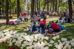 Emirgan park on the weekend in Istanbul, Turkey Royalty Free Stock Photos
